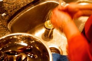 Mussel washing 1